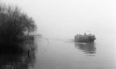 colectiva en la niebla silvia sergi